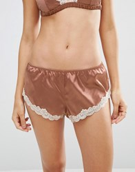 Asos Skye Satin And Lace French Knicker Mocha Brown