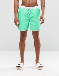 New Look Swim Shorts In Mint Green With Contrast Waistband Green