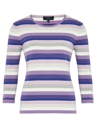 Viyella Petite Stripe Jumper Purple