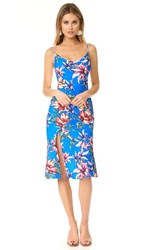 Black Halo Aloma Floral Print Dress Bahama Mama