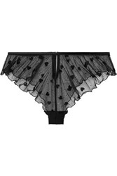 Le Petit Trou Plaisir Cutout Flocked Stretch Tulle Briefs Black