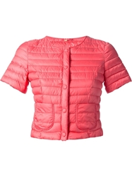 Crust Padded Jacket Pink And Purple