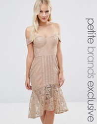 Jarlo Petite Off Shoulder Allover Lace Pencil Dress Mushroom Beige