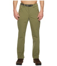 The North Face Straight Paramount 3.0 Pants Deep Lichen Green Men's Casual Pants