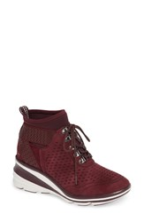 Jambu Offbeat Sneaker Wine Suede