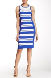 Cullen Stripe Panel Racerback Dress Multi