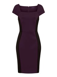 Hotsquash Square Necked Ponte Dress In Clever Damson