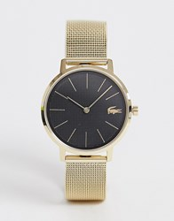 Lacoste Moon Mesh Watch In Gold