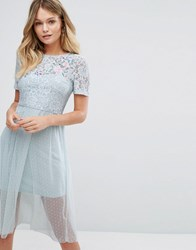 New Look Premium Lace Embroidered Skater Dress Light Blue