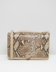 Modalu Leather Shoulder Bag With Chain Strap In Faux Snakeskin Stone Snake Mix Beige