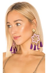 Mercedes Salazar Hibiscus Lila Earrings Purple