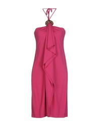 Clips Dresses Knee Length Dresses Women Fuchsia