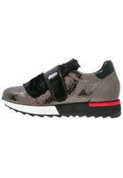 Jeannot Trainers Canna Di Fucile Dark Grey