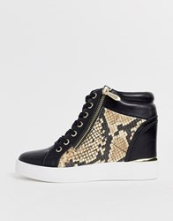 Aldo Ailanna Wedge Sneaker In Natural Snake Multi