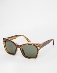 Spitfire Wayfarer Sunglasses Brown