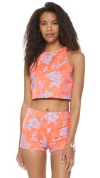 Bb Dakota Reece Floral Jacquard Crop Top Creamsicle