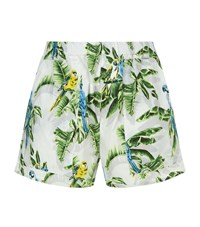 Stella Mccartney Paradise Print Shorts Blue