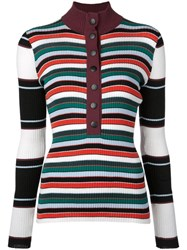 Proenza Schouler Pswl Rugby Striped Turtleneck Sweater White