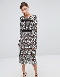 True Decadence Premium Lace Midi Dress With Laddering Detail Black White