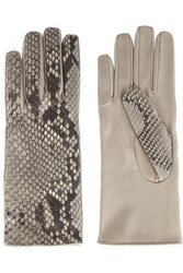 Causse Gantier Jackie Leather And Python Gloves Gray