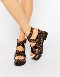 Asos Tallen Chunky Wedge Sandals Tortoise Shell Brown