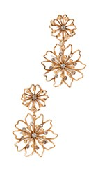 Elizabeth Cole Annabelle Earrings Golden Glow