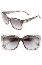 Juicy Couture Women's Shades Of 55Mm Square Sunglasses Havana