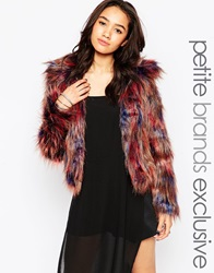 Glamorous Petite Shaggy Coloured Fur Jacket Multi