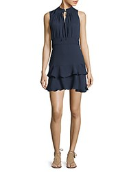 Parker Tiered Fit And Flare Dress Polar