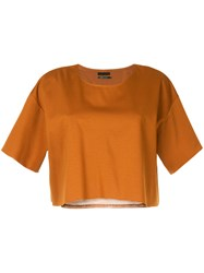 Aula Cropped Blouse Brown