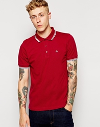 Merc Polo Shirt With Tipping Claretharmony