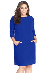 Plus Size Women's Tahari By Arthur S. Levine Seamed A Line Dress Cobalt