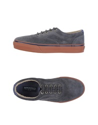 Sperry Top Sider Low Tops And Trainers Grey