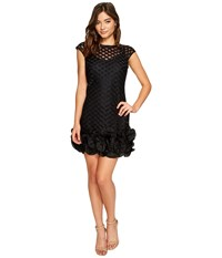 Jessica Simpson S S Lace Dress W Ruffle Hem Black