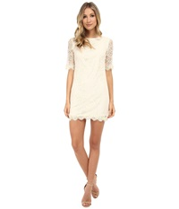 Gabriella Rocha Anya Lace Dress Ivory Women's Dress White