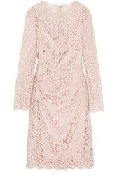 Dolce And Gabbana Corded Cotton Blend Lace Dress Pastel Pink