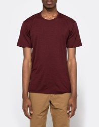 Apolis Merino Crew Neck T Shirt Burgundy