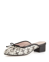 Faigel Low Heel Snake Print Leather Mule Natural Taryn Rose