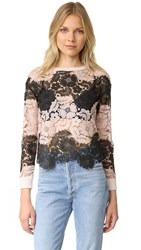 Alice Olivia Jesse Lace Front Sweater Nude Pink Black