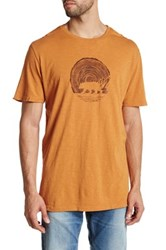 United By Blue Woodgrain Bear Tee Small Brown