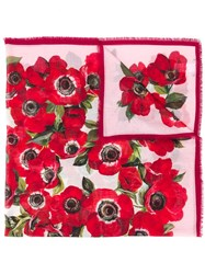 Dolce And Gabbana Anemone Print Scarf Red