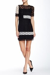 Eva Franco Reyna Colorblock Lace Dress Black