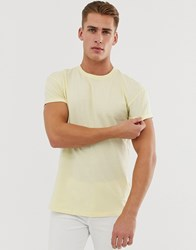 New Look Roll Sleeve T Shirt In Light Yellow