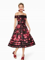 Kate Spade Atlas Rose Kay Dress Black