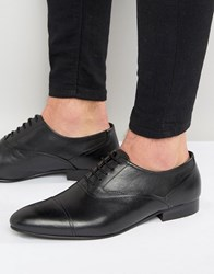 Kg By Kurt Geiger Anthony Oxford Leather Shoes Black Tan