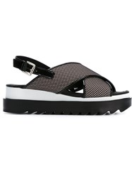 Studio Pollini Rubber Sandals Black