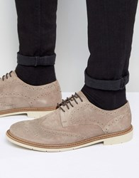 Tommy Hilfiger Metro Suede Brogue Shoes Stone