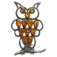 Goldmajor Sterling Silver And Amber Owl Brooch