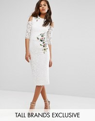 Little Mistress Tall Cold Shoulder Lace Pencil Dress With Floral Embroidery Ivory Cream