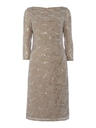 Eliza J Long Sleeve Sequin Lace Dress Taupe